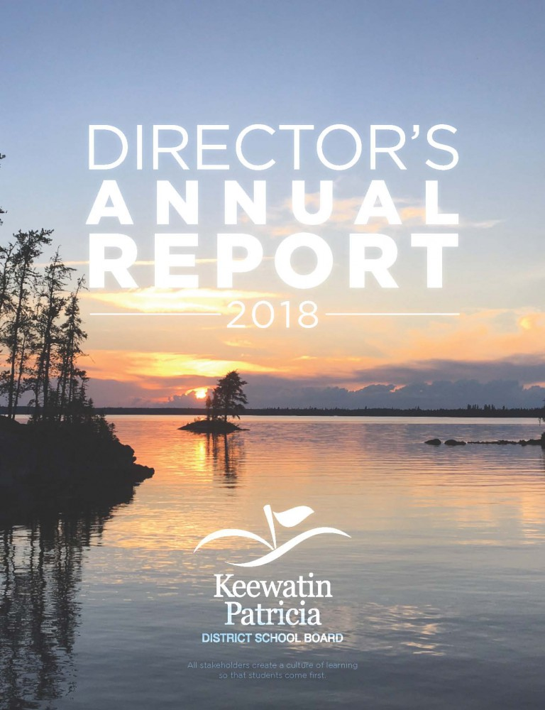 Cover of Director's Annual Report